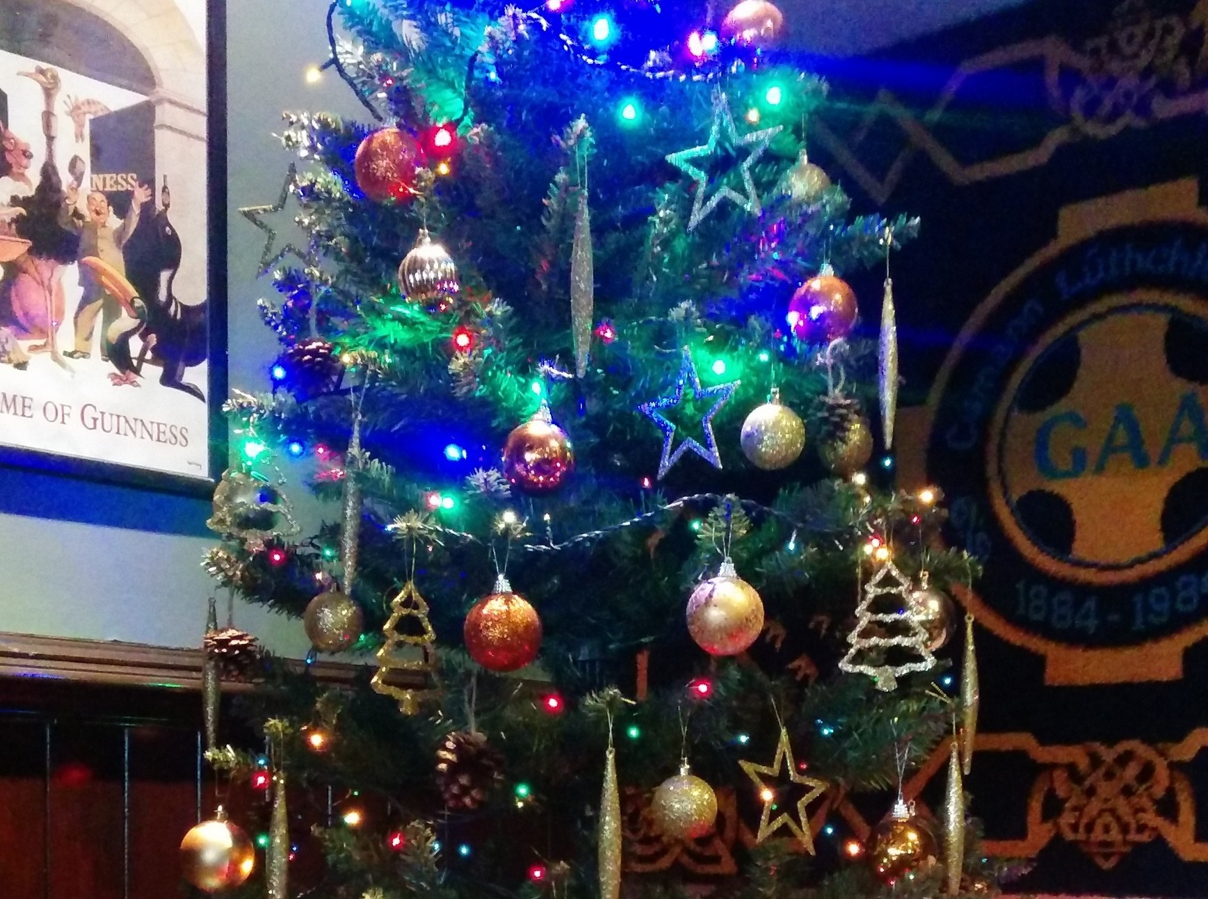 Christmas tree in venue